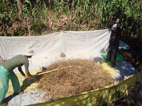 Aporreando frijoles en El Salvador