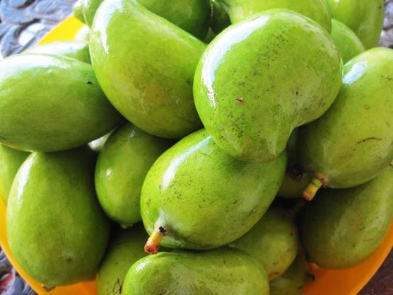 Mangos indios tiernos