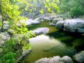 Río Sapo
