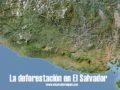 La deforestación en El Salvador