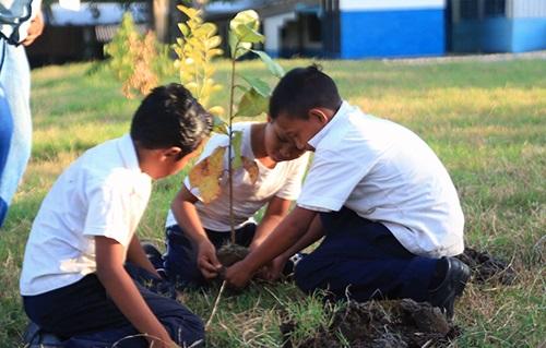 Cómo cuidar el medio ambiente en El Salvador