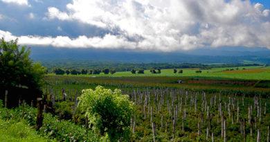 Valle de Zapotitán