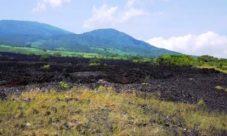 Área Natural Protegida El Playón