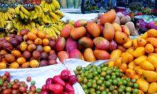 20 Frutas de El Salvador