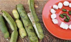 Pepeto (fruta de El Salvador)